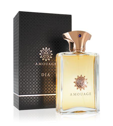 Amouage Dia Pour Homme parfémovaná voda 100 ml Pro muže